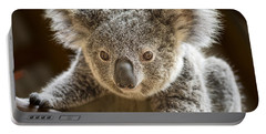 Koala Kid Portable Battery Charger