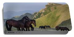 Kobilini Steni Peak Horses-1 Portable Battery Charger