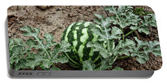 Ky Watermelon Portable Battery Charger