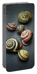 Lady Bug And Snail Shells 1 Portable Battery Charger by Karen Stahlros
