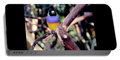 Lady Gouldian Finch Portable Battery Charger by Haleh Mahbod