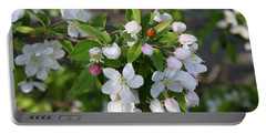 Ladybug On Cherry Blossoms Portable Battery Charger