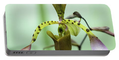 Portable Battery Charger featuring the photograph Lady's Slipper Orchid by Cristina Stefan