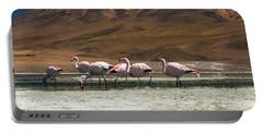 Laguna Colorada, Andes, Bolivia Portable Battery Charger by Gabor Pozsgai