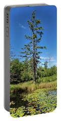 Portable Battery Charger featuring the photograph Lake Birkensee Nature Park Schoenbuch Germany by Matthias Hauser