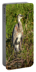 Portable Battery Charger featuring the photograph Lake Bonny Visitor by Carol Bradley