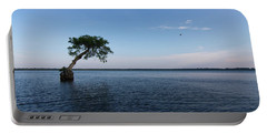 Lake Disston Cypress #2 Portable Battery Charger by Paul Rebmann