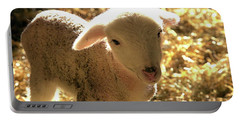 Lamb All Aglow Portable Battery Charger