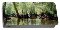 Portable Battery Charger featuring the photograph Land Of The Lost by Debra Forand