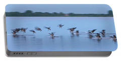 Landing Goose Portable Battery Charger