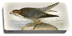 Lanner Falcon Portable Battery Charger