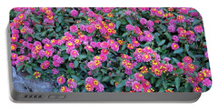 Lantana Portable Battery Charger