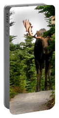 Large Moose Portable Battery Charger