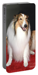 Lassie Portable Battery Charger