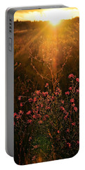 Portable Battery Charger featuring the photograph Last Glimpse Of Light by Jan Amiss Photography