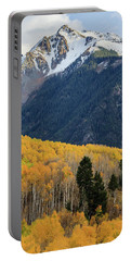 Portable Battery Charger featuring the photograph Last Light Of Autumn Vertical by David Chandler