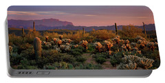 Portable Battery Charger featuring the photograph Last Light On The Sonoran  by Saija Lehtonen