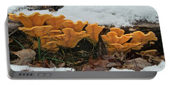 Last Mushrooms Of The Seasons Portable Battery Charger by Michael Peychich