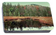 Portable Battery Charger featuring the photograph Last Of Autumn On Fly Pond by David Patterson