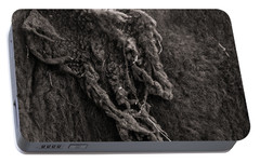 Portable Battery Charger featuring the photograph Last Of Winter Coat by Chris Bordeleau