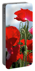Portable Battery Charger featuring the photograph Last Poppies Of Summer by Baggieoldboy