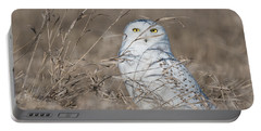 Last Year Of The Snowy Owls... Portable Battery Charger