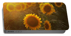 Late Afternoon Golden Glow Portable Battery Charger