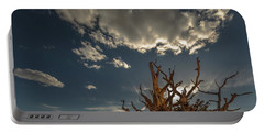 Late Afternoon In The Bristlecone Forest Portable Battery Charger