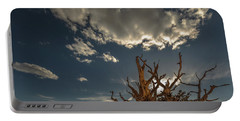 Portable Battery Charger featuring the photograph Late Afternoon In The Bristlecone Forest by Tim Bryan