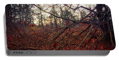 Late Autumn Morning Portable Battery Charger