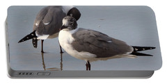Laughing Gull Portable Battery Charger