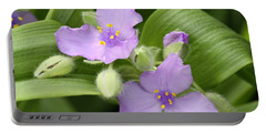 Portable Battery Charger featuring the photograph Lavender Blooms In Spring by Sheila Brown