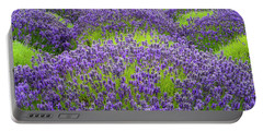 Lavender In Blooming Portable Battery Charger