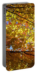 Portable Battery Charger featuring the photograph Layers Of Autumn by Corinne Rhode