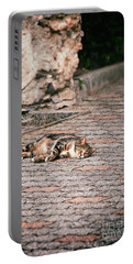 Portable Battery Charger featuring the photograph Lazy Cat    by Silvia Ganora