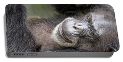 Portable Battery Charger featuring the photograph Lazy Chimp - Lowry Park Zoo by John Black