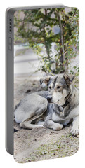 Lazy Dog Portable Battery Charger