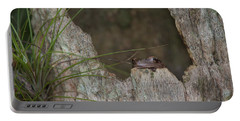 Lazy Tree Frog Portable Battery Charger
