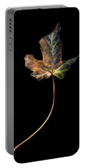 Leaf 1 Portable Battery Charger