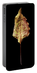 Leaf 6 Portable Battery Charger