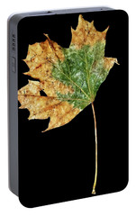 Portable Battery Charger featuring the photograph Leaf 9 by David J Bookbinder