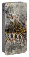 Leaf Veins In Ice Portable Battery Charger