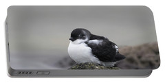 Least Auklet Portable Battery Charger