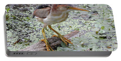 Portable Battery Charger featuring the photograph Least Bittern by Doris Potter