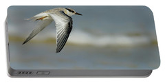 Least Tern Portable Battery Charger