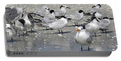 Least Terns Portable Battery Charger