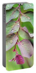 Leaves And Raindrops Portable Battery Charger
