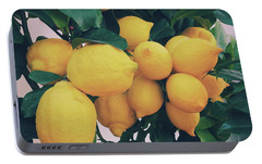 Lemon Tree Portable Battery Charger by Happy Home Artistry