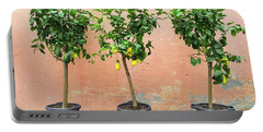 Lemon Trees With Ripe Fruits Portable Battery Charger