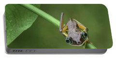 Portable Battery Charger featuring the photograph Lemur Tree Frog - 1 by Nikolyn McDonald